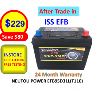 Neuton Power EFB95D31L (T110)