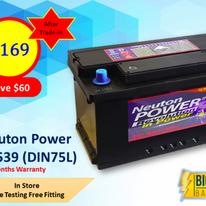 Neuton Power Automotive Battery